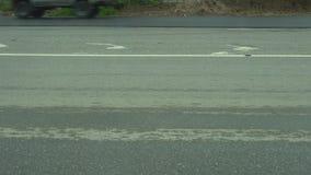 Carros que correm através da estrada asfaltada filme