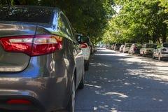 Carros sob árvores na cidade Imagem de Stock Royalty Free