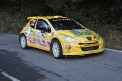 Carros super da reunião de Peugeot 207 2000 fotografia de stock royalty free