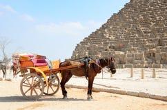 Carros traídos por caballo en Giza Imagen de archivo libre de regalías