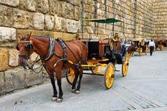 Carros traídos por caballo en Sevilla Imagen de archivo libre de regalías
