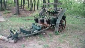 Carros viejos con las flores decorativas almacen de metraje de vídeo