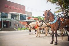Carros y caballos cerca de Hard Rock Cafe de Kuta Foto de archivo