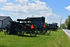 Carros y cochecillos para Amish y menonitas parqueados fotografía de archivo libre de regalías