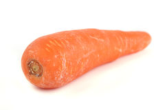 Carrot Royalty Free Stock Photo