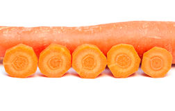 Carrot. Royalty Free Stock Photo