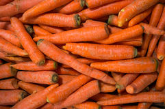 Carrot Royalty Free Stock Photos