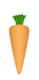 Carrot. The drawn carrot isolated on white background Stock Photo