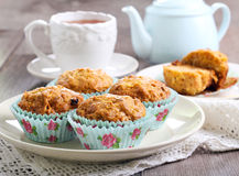 Carrot and apple muffins Royalty Free Stock Image