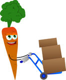 Carrot as delivery man Stock Photography