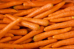 Carrot background Stock Image