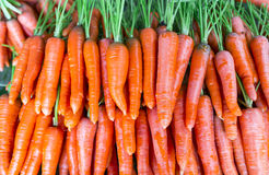 Carrot. Background of organic fresh carrot Stock Images