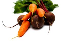 Carrot and beet Stock Images