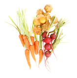 Carrot, beetroot and Cape gooseberry Stock Images