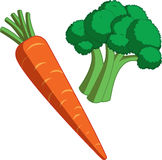 Carrot and Broccoli. Single carrot with head of broccoli Vector Illustration