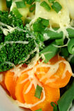 Carrot, Broccoli And Beans With Cheese Stock Images