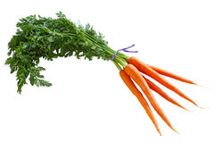 Carrot Bunch Royalty Free Stock Photos