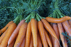 Carrot bunch. A closeup from a fresh carrot bunch Royalty Free Stock Photo