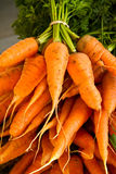 Carrot Bunches Royalty Free Stock Image