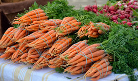 Carrot bundles on display. Carrot bundles with greens attached on display at outdoor market Royalty Free Stock Photography