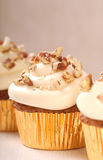 Carrot cake cupcake with cream cheese frosting. Delicious carrot cake cupcake with cream chees frosting, toasted coconut and chopped pecan nuts stock photos
