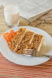 Carrot Cake On Lazy Day stock photography