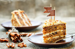 Carrot cake with walnuts, prunes and dried apricots Royalty Free Stock Image