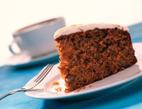 Carrot cake on white plate Royalty Free Stock Photo