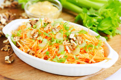 Carrot and celery salad Royalty Free Stock Image