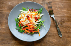 Carrot - celery salad with cranberries Stock Photography