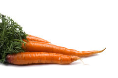 Carrot close up Royalty Free Stock Images