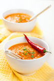 Carrot cream soup Stock Images