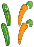 Carrot & cucumber. Represent illustration of carrots & cucumbers Royalty Free Stock Photo
