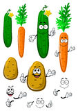 Carrot, cucumber and potato vegetables Royalty Free Stock Photography