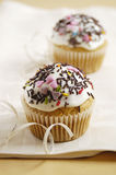 Carrot cup cake Stock Images