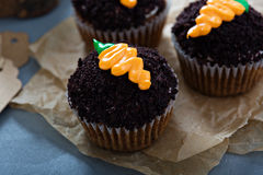Carrot cupcakes with chocolate crumbs and frosting. Carrot cupcakes with chocolate crumbs and cream cheese frosting Royalty Free Stock Photo
