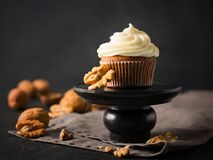 Carrot cupcakes or muffins with nuts on dark background. Copy space Royalty Free Stock Images