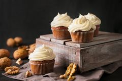 Carrot cupcakes or muffins with nuts on dark background. Copy space Royalty Free Stock Photography