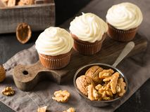 Carrot cupcakes or muffins with nuts on dark background. Copy space Royalty Free Stock Image