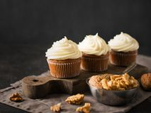 Carrot cupcakes or muffins with nuts on dark background. Copy space Royalty Free Stock Photos