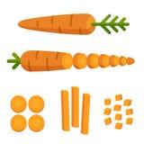 Carrot cuts illustration Stock Photos