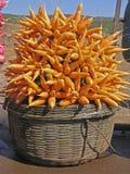 Carrot, Daucus carota var. mativue Stock Image