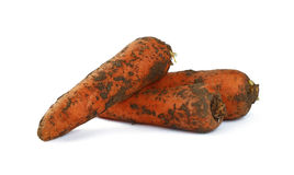 Carrot dirty in ground close up isolated on white Stock Photo
