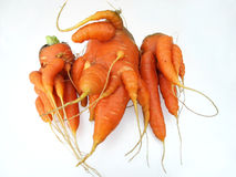 Carrot and ecology. Ecology is very important for us Stock Photo