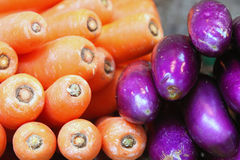 Carrot & Eggplant Royalty Free Stock Images