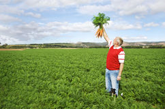 The carrot farmer Stock Image