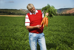 The carrot farmer Stock Photography