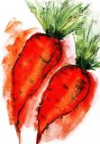 Carrot food vegetables watercolor sketch cooking drawing sketch stock illustration