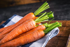 Carrot. Fresh Carrots bunch. Baby carrots. Raw fresh organic orange carrots. Healthy vegan vegetable food Royalty Free Stock Images