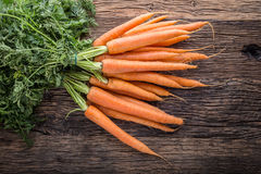 Carrot. Fresh Carrots bunch. Baby carrots. Raw fresh organic orange carrots. Healthy vegan vegetable food Stock Photography